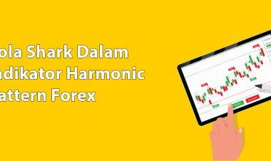 Pola Shark Dalam Indikator Harmonic Pattern Forex